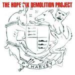 PJ Harvey - Orange Monkey - kolejna piosenka z płyty The Hope Six Demolition Project