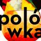 Polówka 2017, KINO ŁÓDŹ, Łódź, Łódź