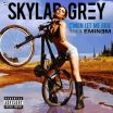 C'mon Let Me Ride - Eminem, Skylar Grey